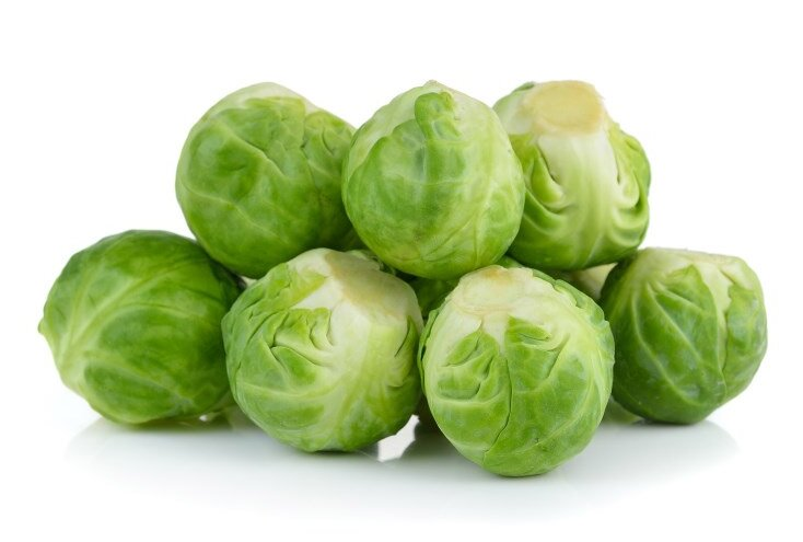 Brussels Sprouts for Dogs