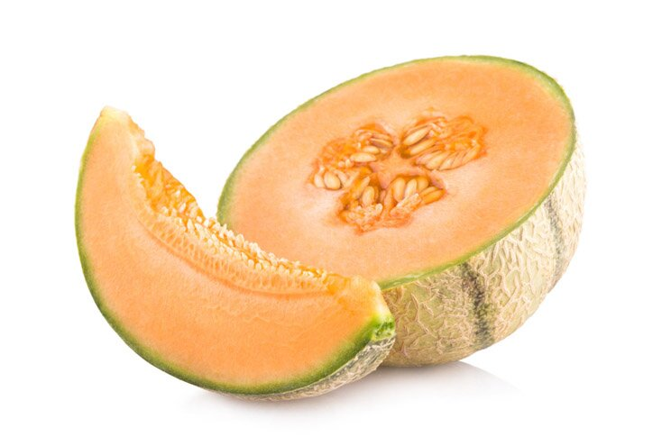 Cantaloupe for Dogs